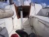 fall-regatta-001