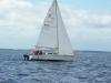 sailgator