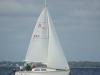 sailgator2
